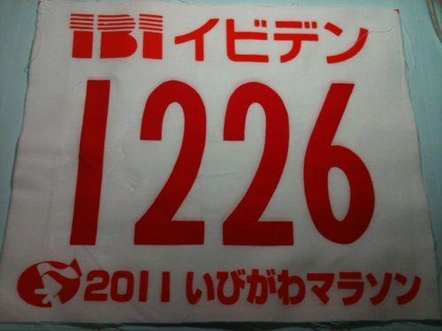 Ibigawa_zekken